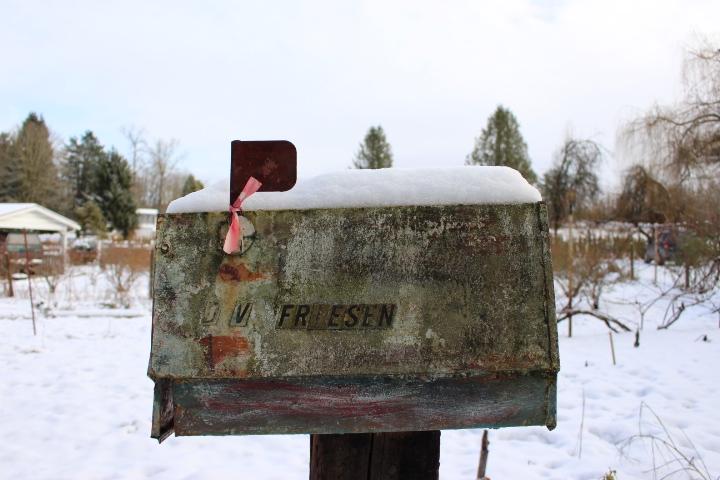 winter, snow, nature, Christmas, vintage, lifestyle, lifestyle blog, photo blog, photo journal