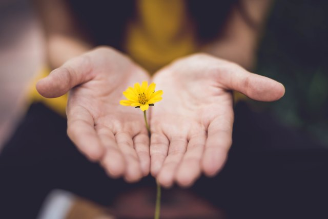 365 day meditation challenge, meditation challenge, healing trauma, healing trauma through meditation, healing trauma through mindfulness, benefits of meditation, improve focus through meditation, personal development, mindfulness, benefits of mindfulness